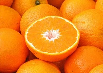 Risultati immagini per arancia Vaniglia